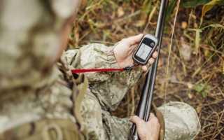 GPS навигатор для охоты