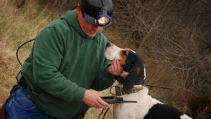 GPS ошейник для охотничьих собак